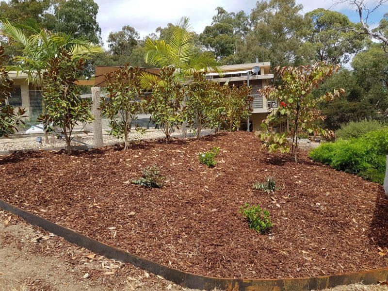 gardening irrigation eastern suburbs planting