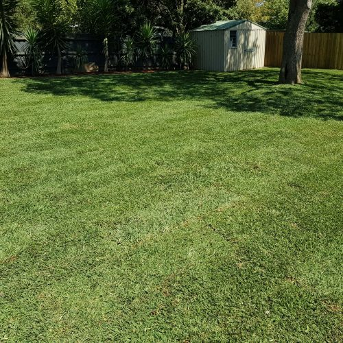 Jays Gardening Garden Turf Layout Granger2