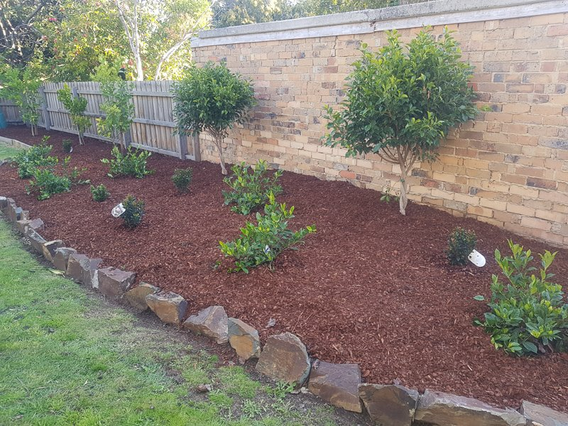 Jays Gardening feature veggie garden bed Kim
