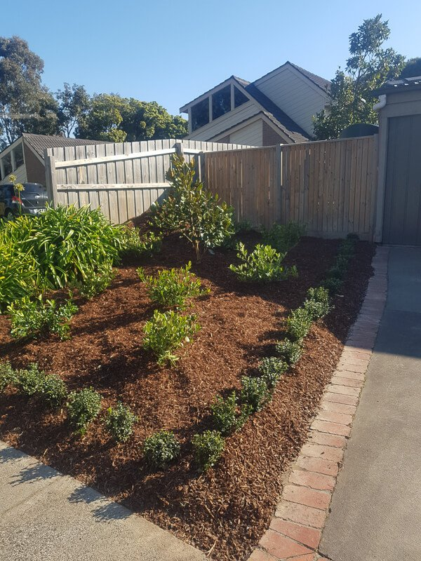 Jays Gardening planting mulching and pruning to sell (2)
