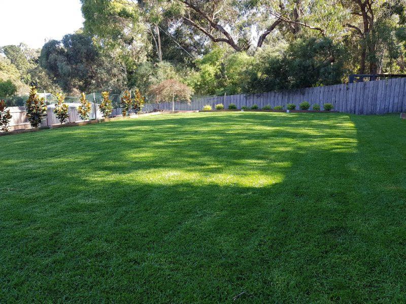 Jays Gardening total garden makeover Home site (1)