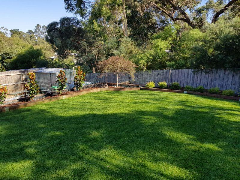Jays Gardening total garden makeover Home site (2)